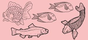 Cover Image: 15 Woodburning Fish Patterns You Need To Try