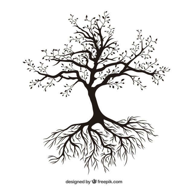 Tree with roots Free Vector