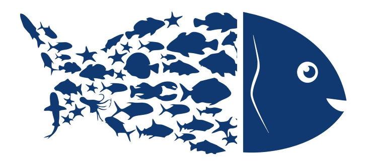 Fish logo. Blue symbol of fish on a white background.