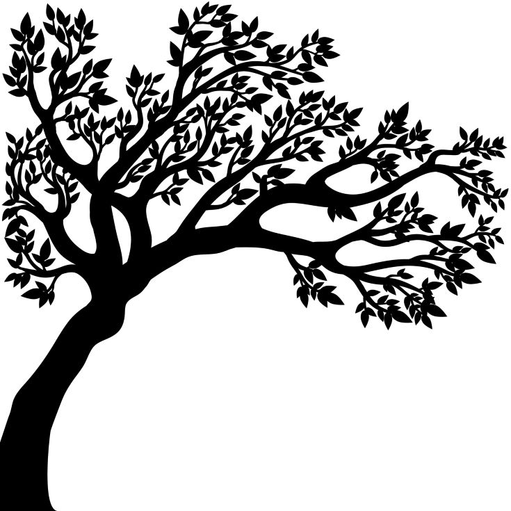 vector illustration of the tree silhouette with leaves