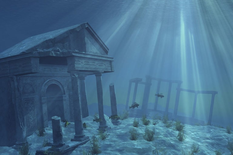 The Best Aquarium Backgrounds for Fun Fish Tanks