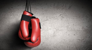 The 4 Best Boxing Gloves for Beginners