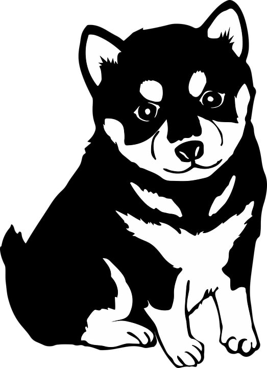 Minute Husky Stencils