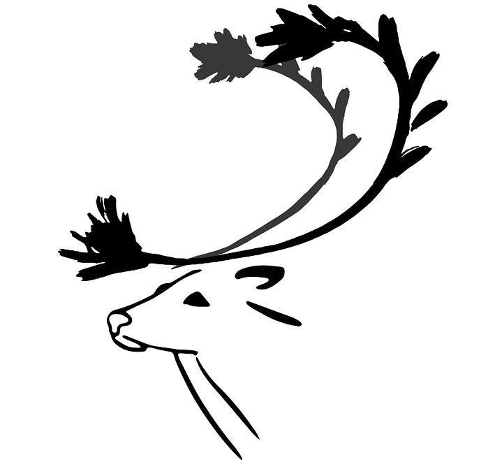 Wild Deer Art in white background