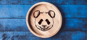 Cover Image: Wood Burning Tips and Techniques for Anyone to Try!