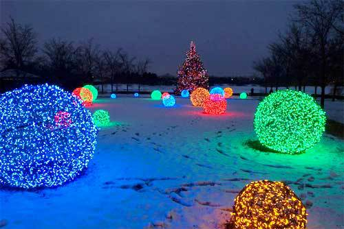Colorful Christmas Light Balls in front of a Christmas Tree