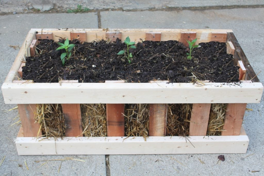 Quain little garden crate