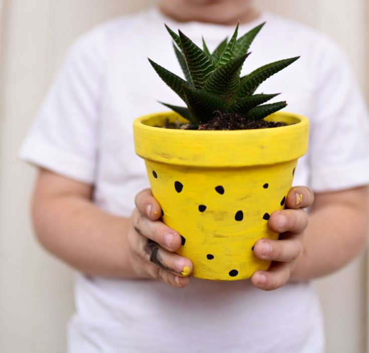 a boy holding a DIY Pineapple Planters in selective focus