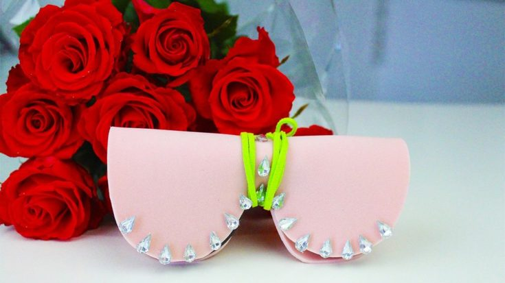 DIY Sunglasses Case with red roses on the background