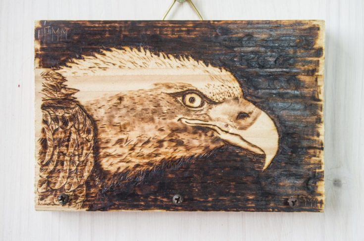 the ancient art of pyrography, wood and fire, the white-headed eagle's eye, hang keys and objects