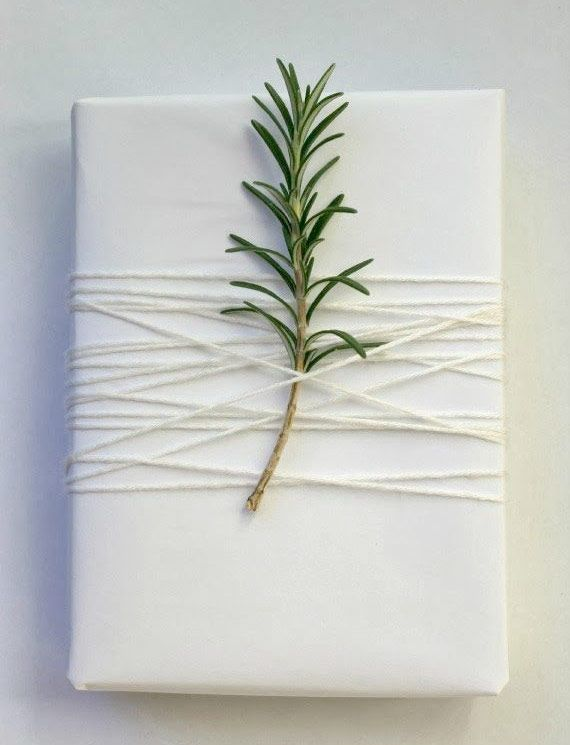 White Christmas Gift Wrapper with fresh pine