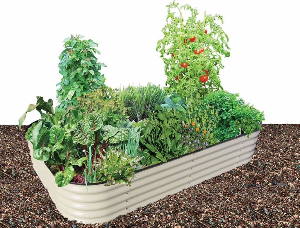 White tin raised garden bed with tomatoes etc