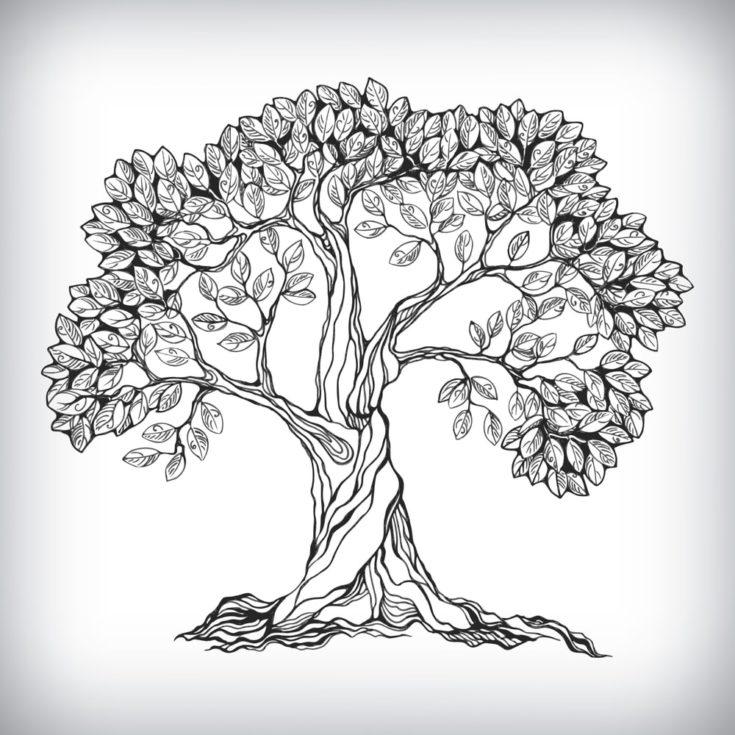 Hand drawn tree symbol isolated vector illustration