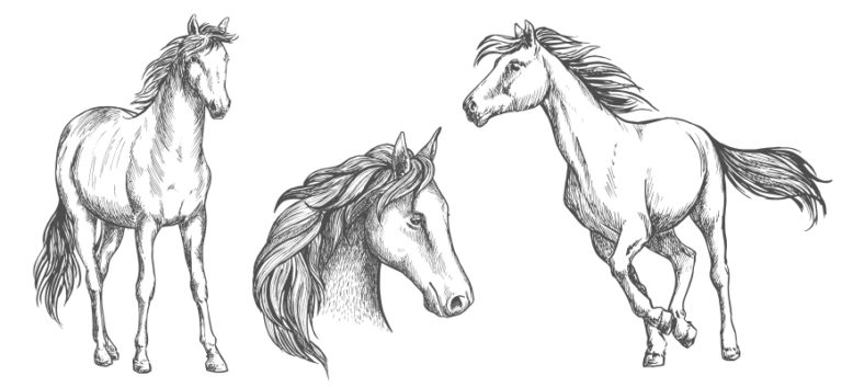 Free Horse Woodburning Patterns; For the Equestrian in You
