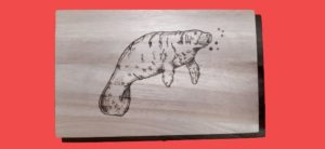 Cover Image: How To Create Woodburning Art