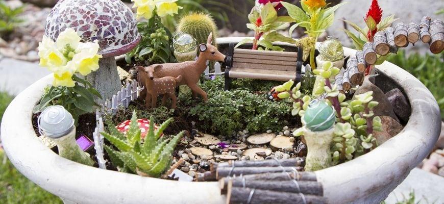 Fairy Garden on the large pot