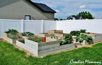 Creative Mommas Pallet Raised Garden Boxes