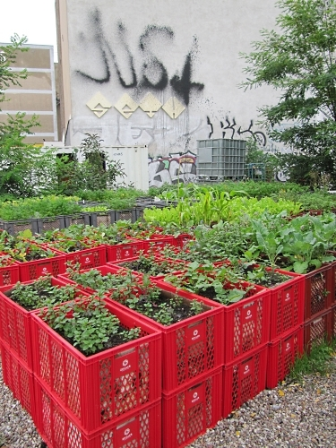Red Sturdy Plastic Boxes Garden Bed