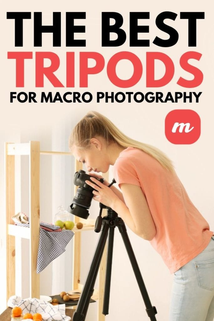 The Best Tripods For Macro Photography