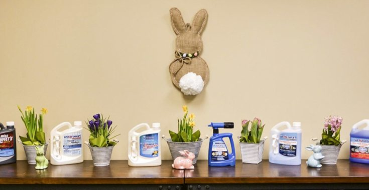 DIY burlap rabbit wall decoration perfectly hanged on wall and a potted flowers and figurine rabbits on a wooden table.