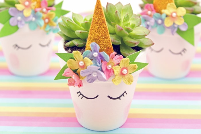 Beautiful unicorn succulent planter planted with succulent.