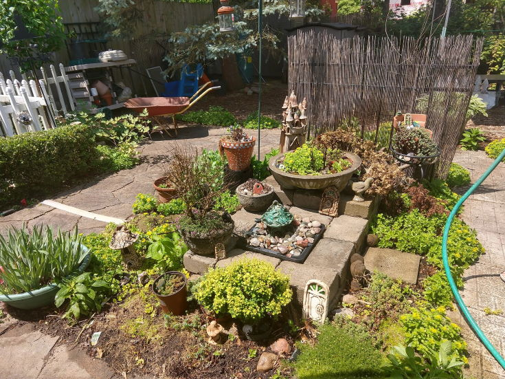 Fairy Garden, plants on pots and on the ground, pathway