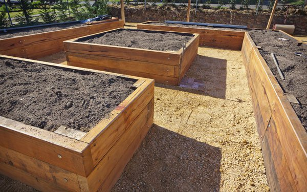 Different Sizes of Wooden Raised Garden Beds