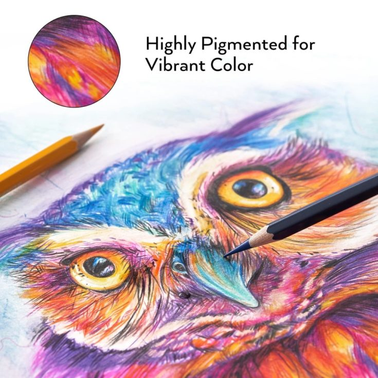 An art sketch of Owl bird using the arte4za watercolor pencil.